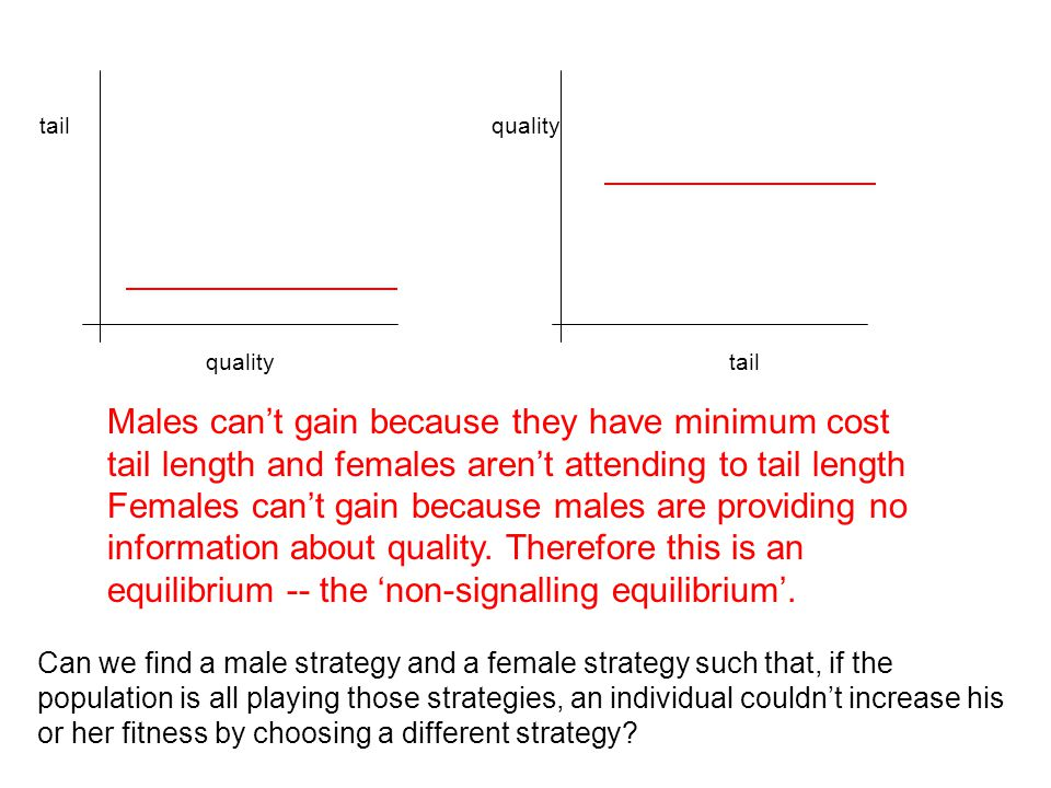 quality tailquality tail Can we find a male strategy and a female strategy such that, if the population is all playing those strategies, an individual couldn't increase his or her fitness by choosing a different strategy.