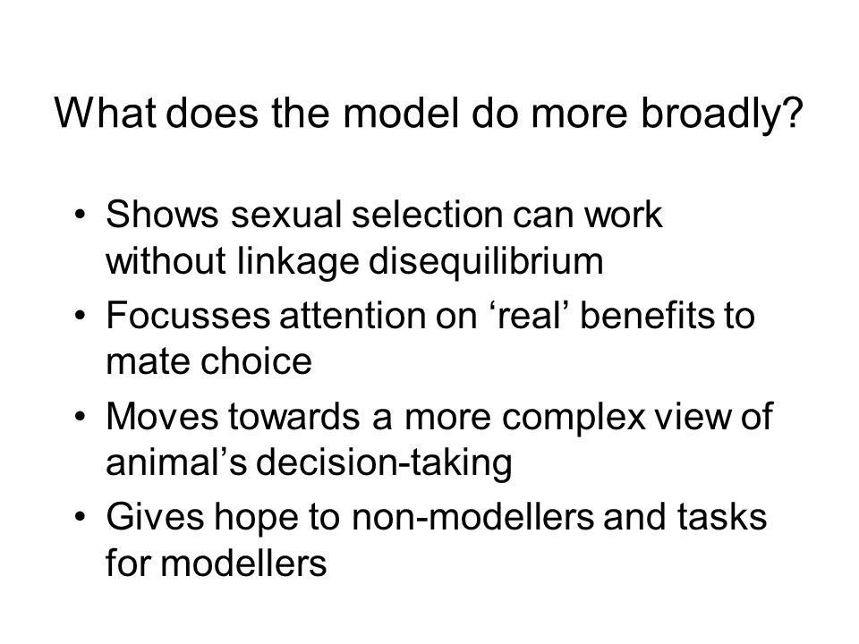 What does the model do more broadly.