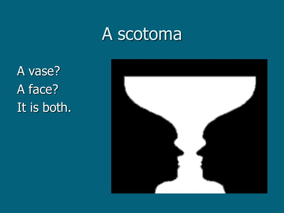 A scotoma A vase A face It is both.