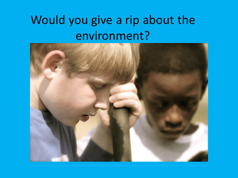 Would you give a rip about the environment