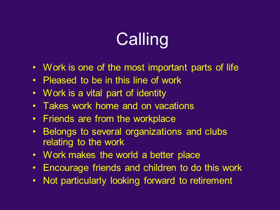 Calling Work is one of the most important parts of life Pleased to be in this line of work Work is a vital part of identity Takes work home and on vac