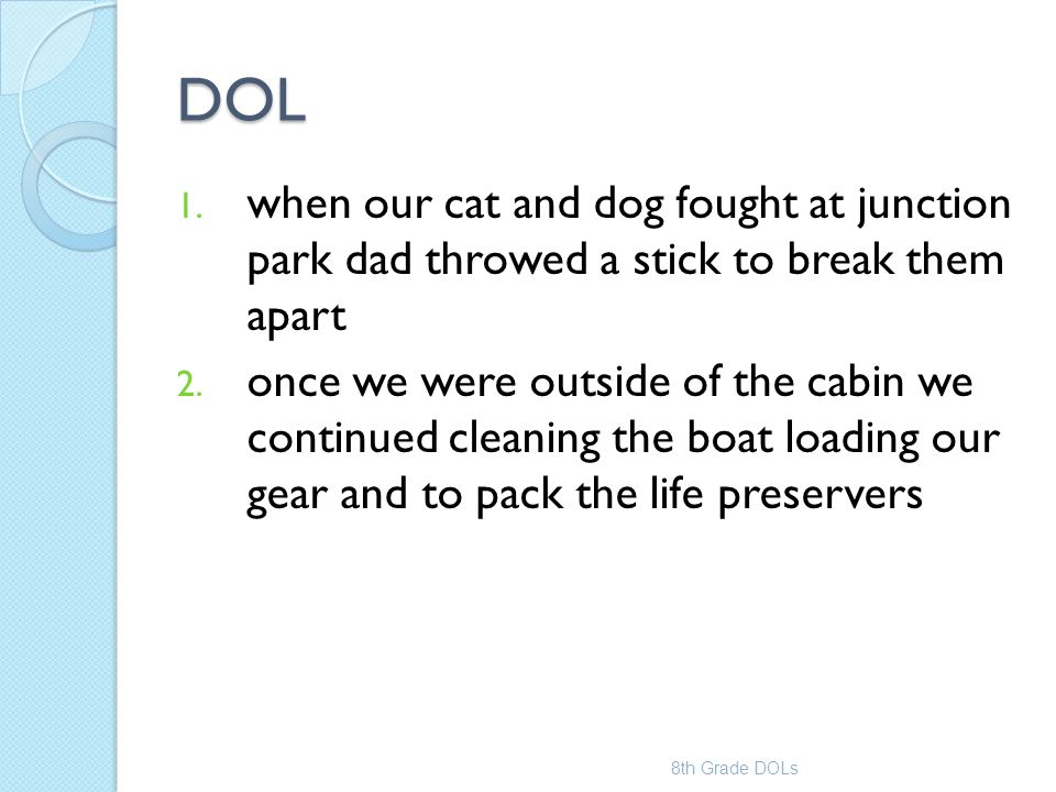 DOL 1. when our cat and dog fought at junction park dad throwed a stick to break them apart 2. once we were outside of the cabin we continued cleaning