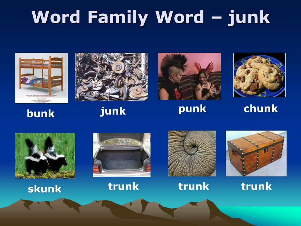 Word Family Word – junk bunk junk punk chunk skunk trunk