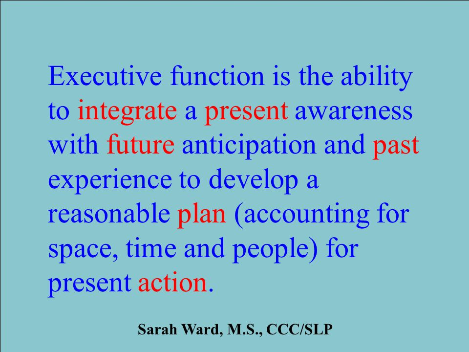 Institute for Learning and Development 2013 Research ILD 2008 Executive function is the ability to integrate a present awareness with future anticipation and past experience to develop a reasonable plan (accounting for space, time and people) for present action.