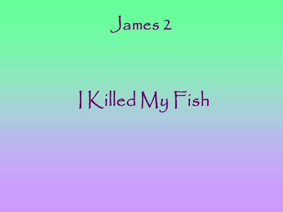 James 2 I Killed My Fish