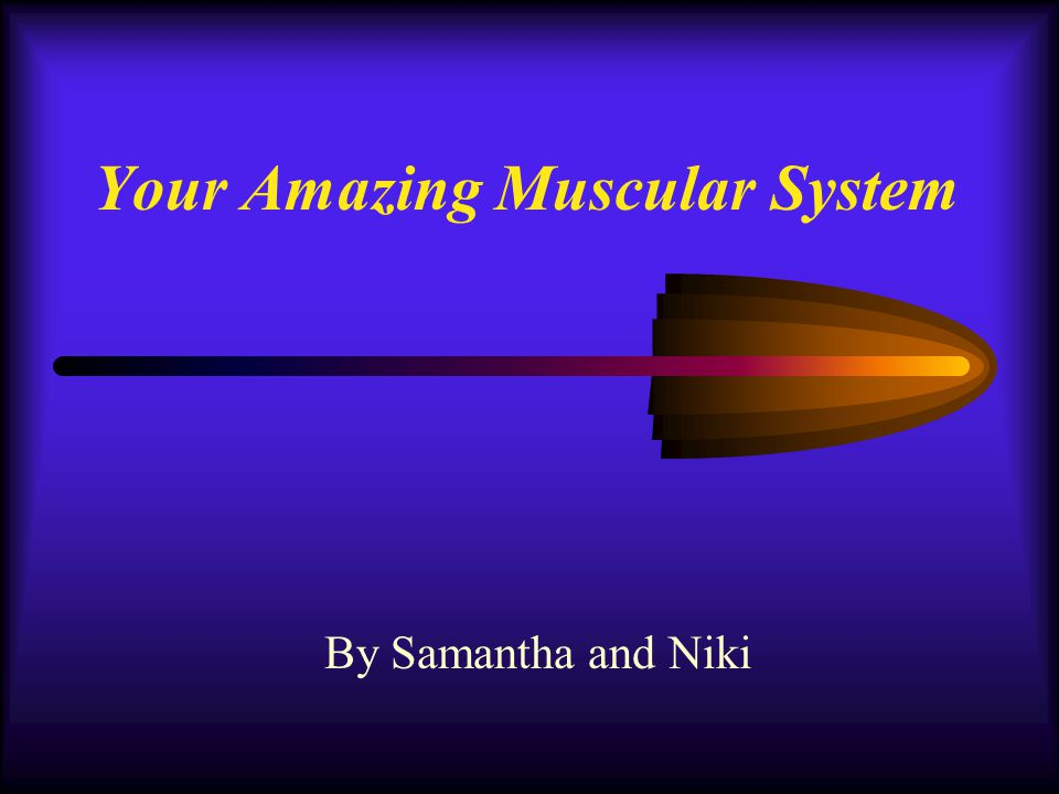 Your Wonderful Muscles The Muscular System is a very important part of the human body.