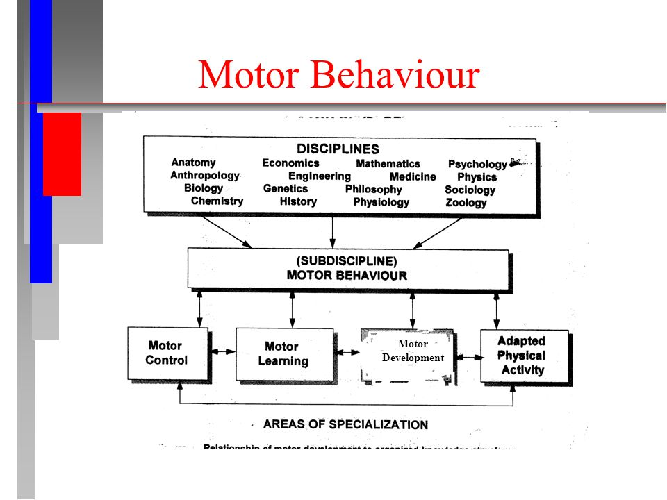 Motor Behaviour Motor Development