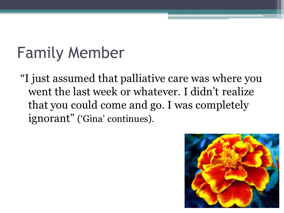 Family Member I just assumed that palliative care was where you went the last week or whatever.