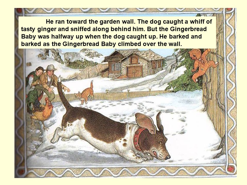 He ran toward the garden wall. The dog caught a whiff of tasty ginger and sniffed along behind him.
