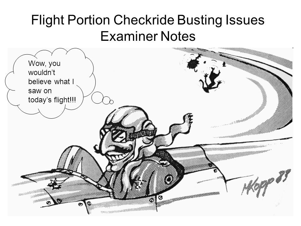 Flight Portion Checkride Busting Issues Examiner Notes Wow, you wouldn't believe what I saw on today's flight!!!