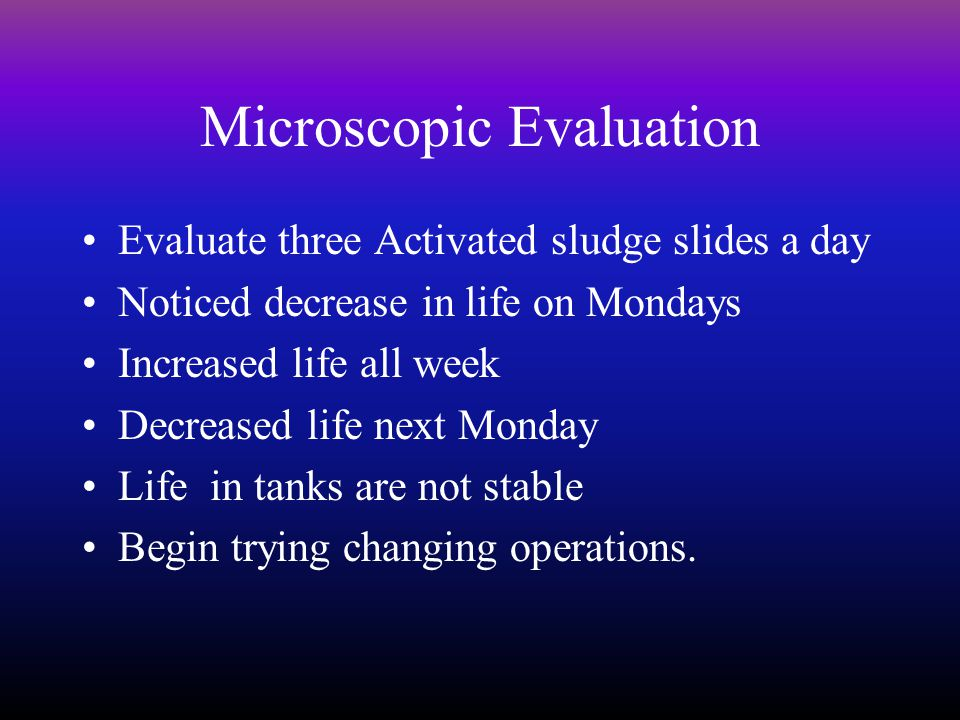 Microscopic Evaluation Evaluate three Activated sludge slides a day Noticed decrease in life on Mondays Increased life all week Decreased life next Monday Life in tanks are not stable Begin trying changing operations.