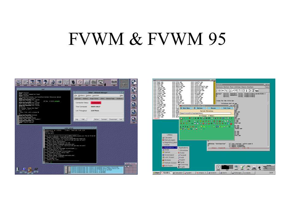 FVWM & FVWM 95