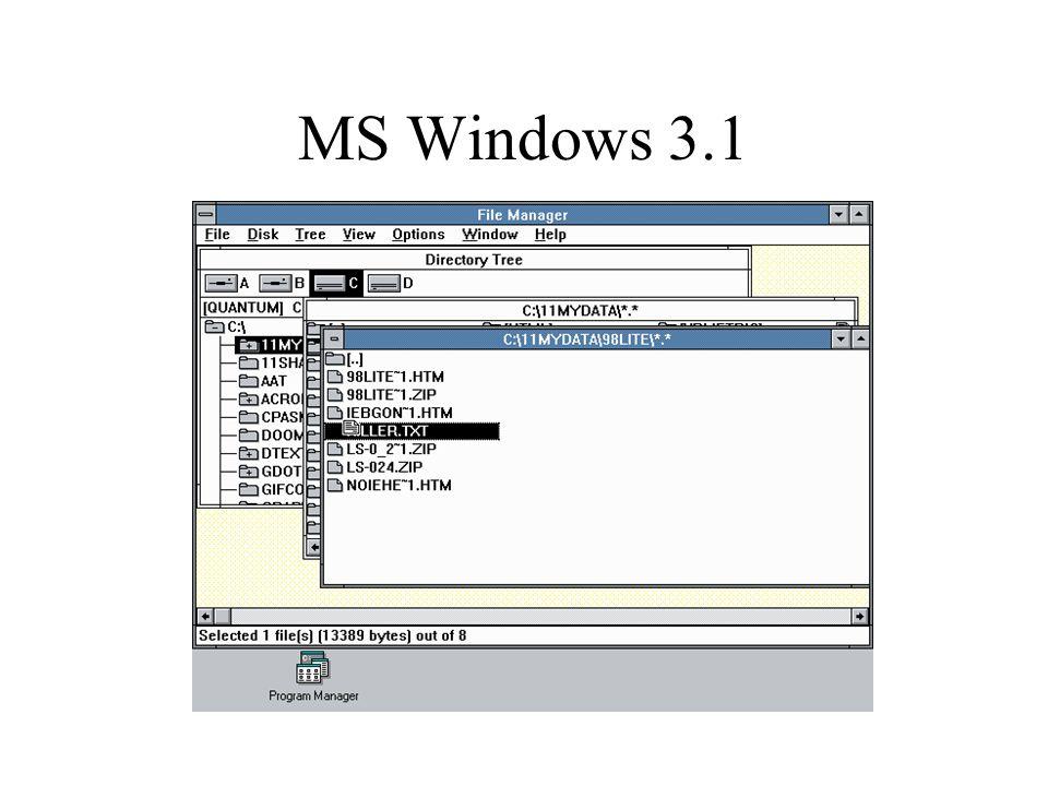 MS Windows 3.1
