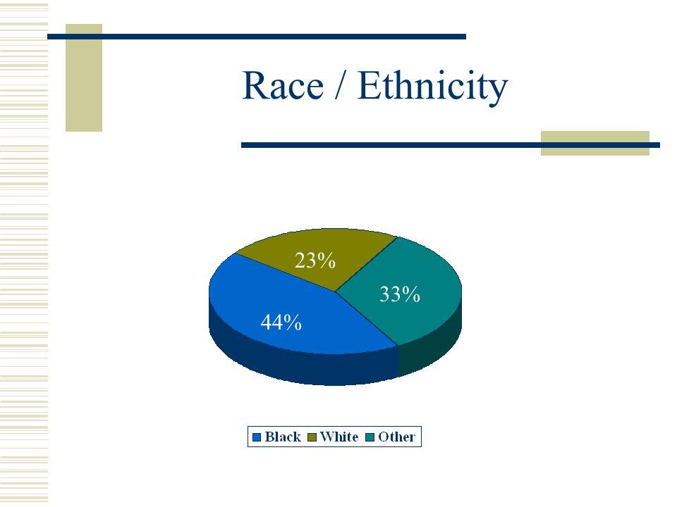 Race / Ethnicity 23% 44% 33%