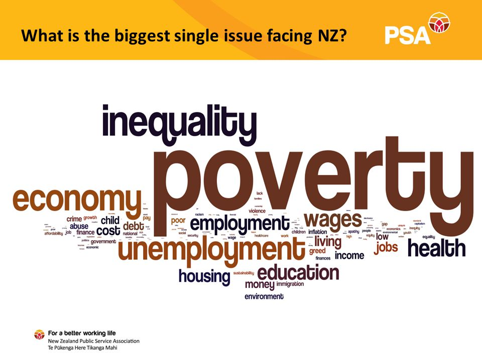 What is the biggest single issue facing NZ?