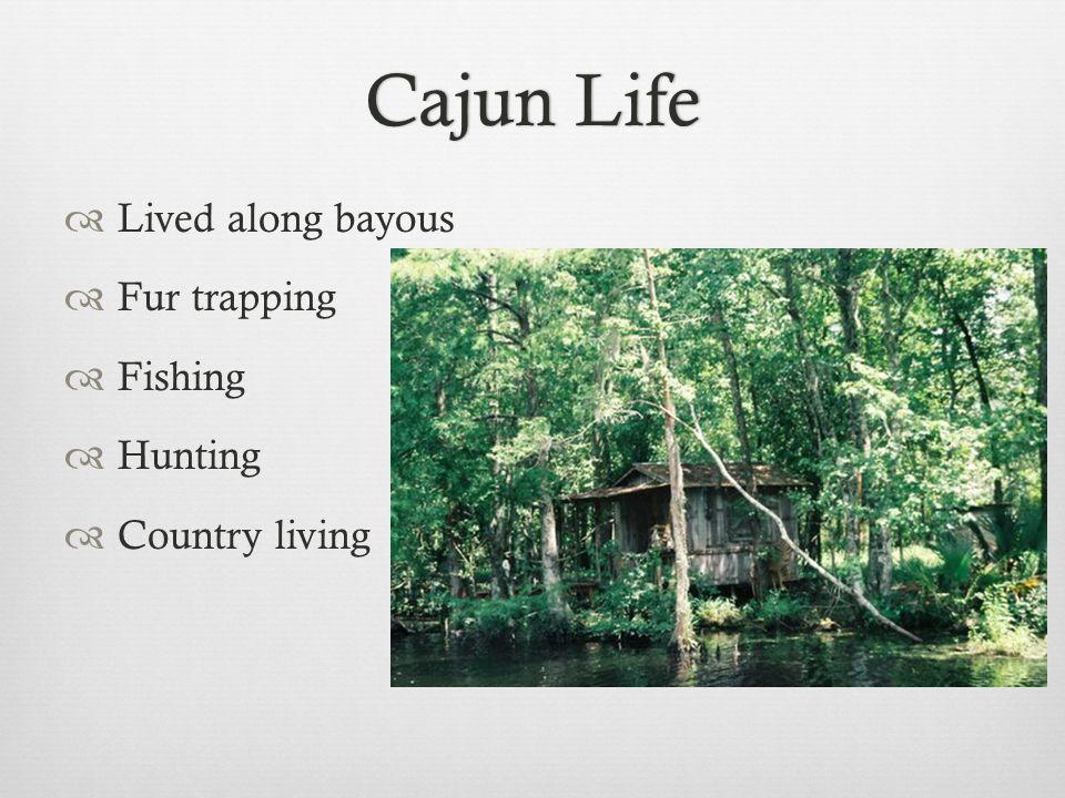 Cajun LifeCajun Life  Lived along bayous  Fur trapping  Fishing  Hunting  Country living