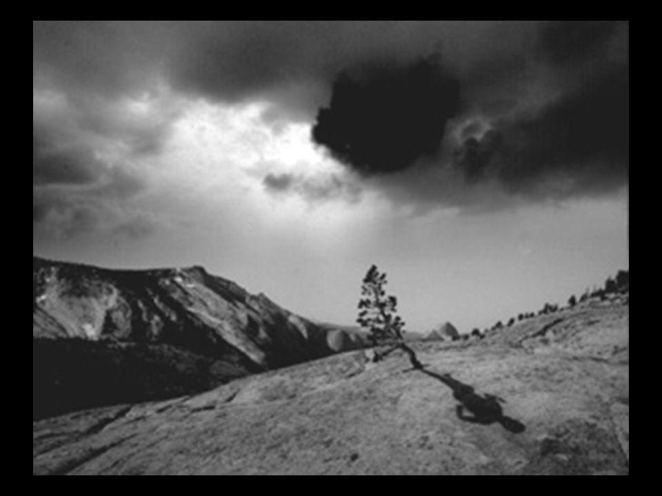 Storm Thorgerson graphic designer - Pink Floyd