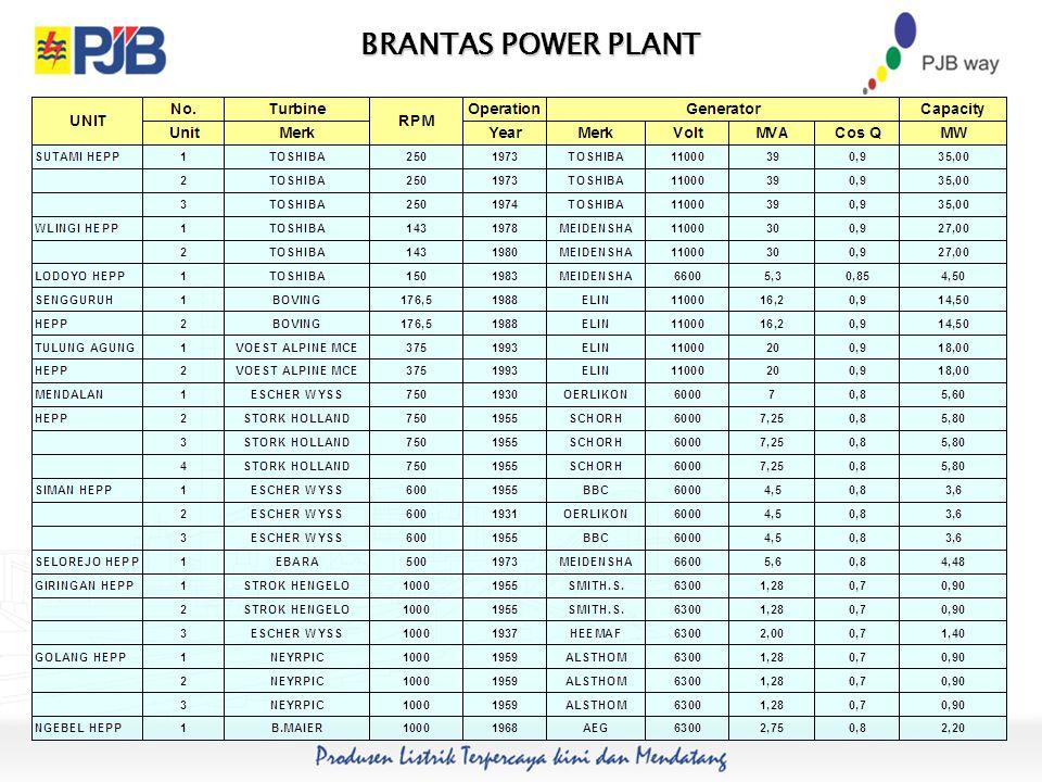 BRANTAS POWER PLANT