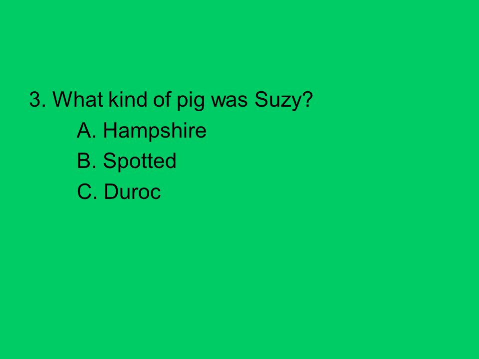 3. What kind of pig was Suzy A. Hampshire B. Spotted C. Duroc