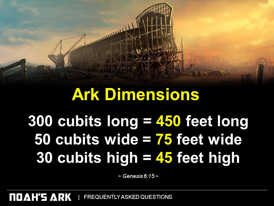   FREQUENTLY ASKED QUESTIONS NOAH'S ARK 300 cubits long = 450 feet long 50 cubits wide = 75 feet wide 30 cubits high = 45 feet high ~ Genesis 6:15 ~ Ark Dimensions