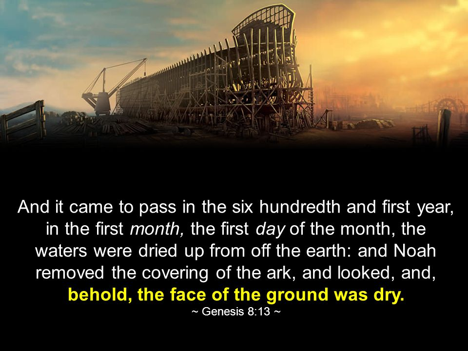 And it came to pass in the six hundredth and first year, in the first month, the first day of the month, the waters were dried up from off the earth: and Noah removed the covering of the ark, and looked, and, behold, the face of the ground was dry.