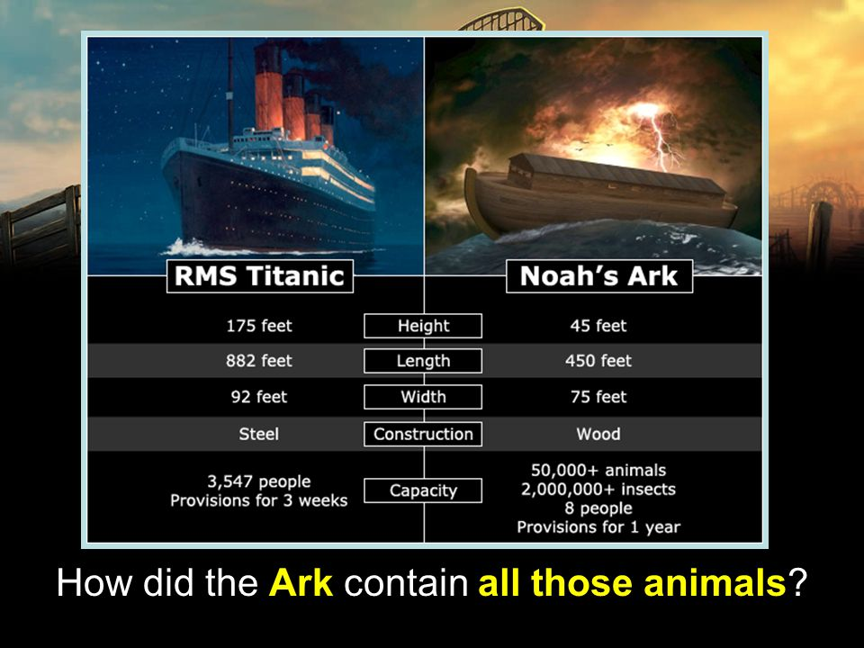 How did the Ark contain all those animals?