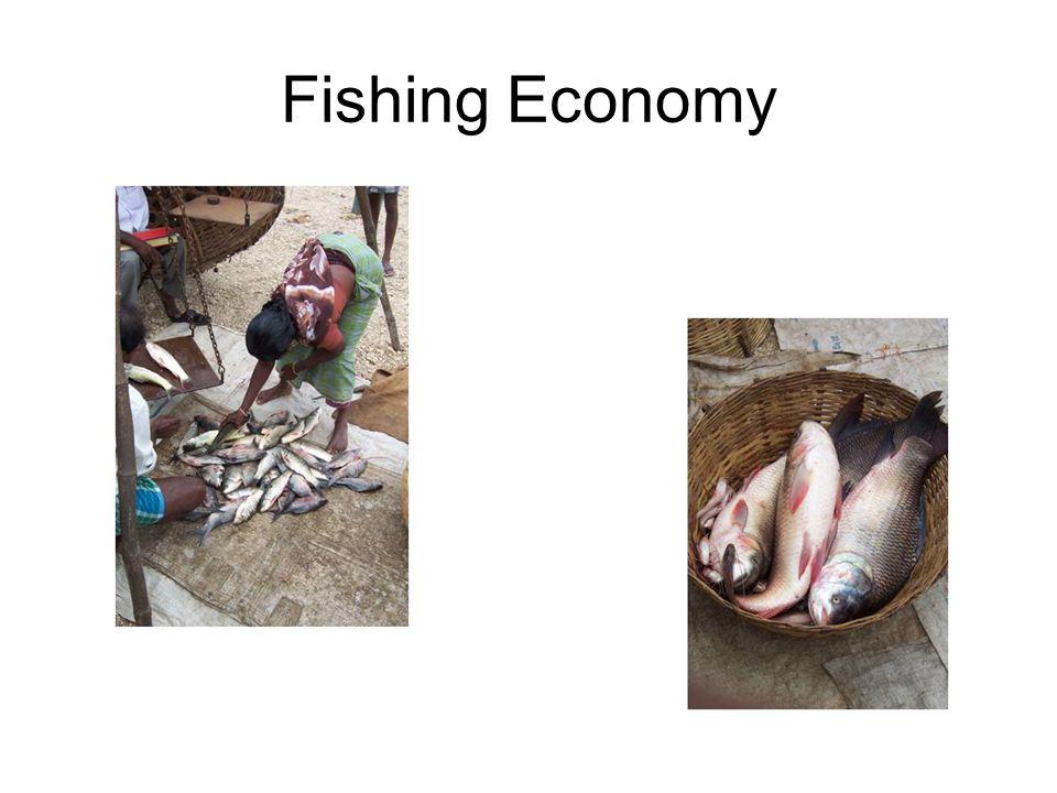 Fishing Economy