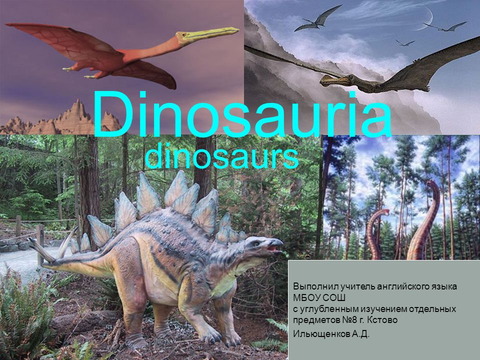 Dinosauria dinosaurs Выполнил учитель английского языка МБОУ СОШ с углубленным изучением отдельных предметов №8 г.