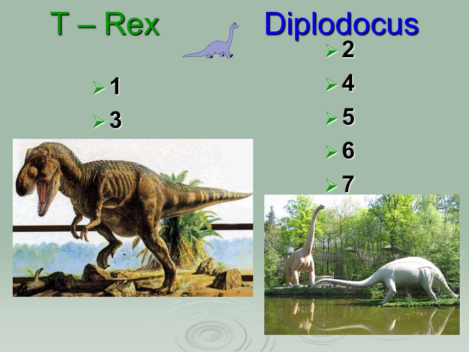 T – Rex Diplodocus 1111 3333 2222 4444 5555 6666 7777