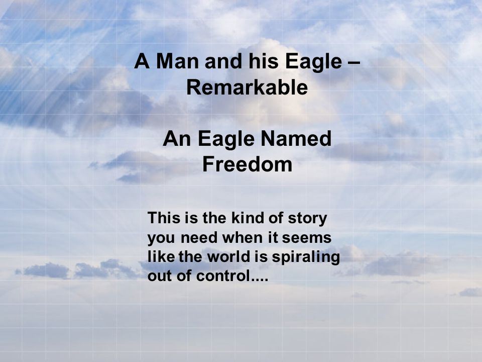 A Man and his Eagle – Remarkable An Eagle Named Freedom This is the kind of story you need when it seems like the world is spiraling out of control....