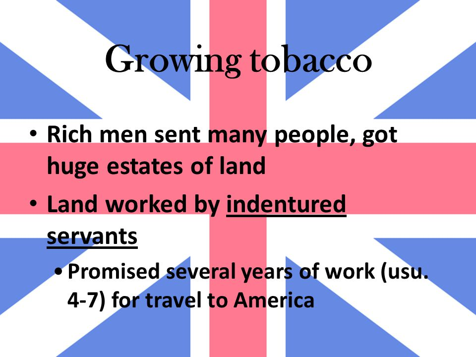 Growing tobacco Rich men sent many people, got huge estates of land Land worked by indentured servants Promised several years of work (usu.