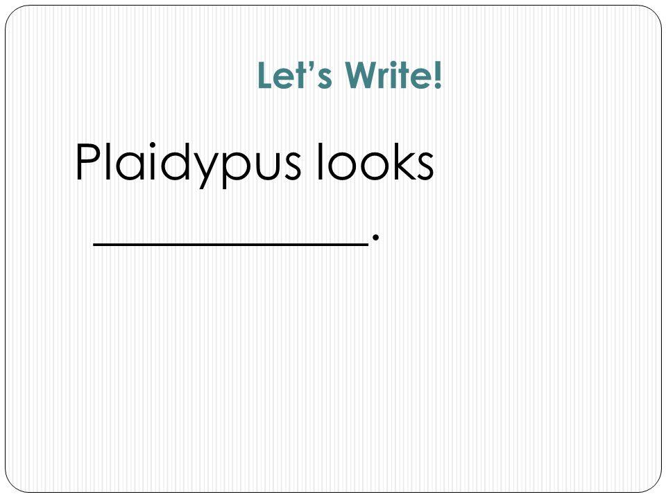 Let's Write! Plaidypus looks ___________.
