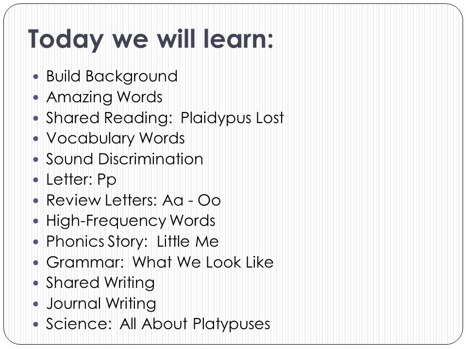 Today we will learn: Build Background Amazing Words Shared Reading: Plaidypus Lost Vocabulary Words Sound Discrimination Letter: Pp Review Letters: Aa