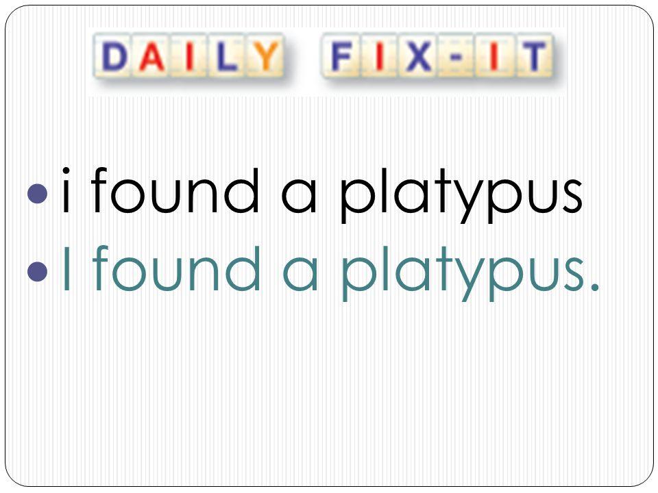 i found a platypus I found a platypus.