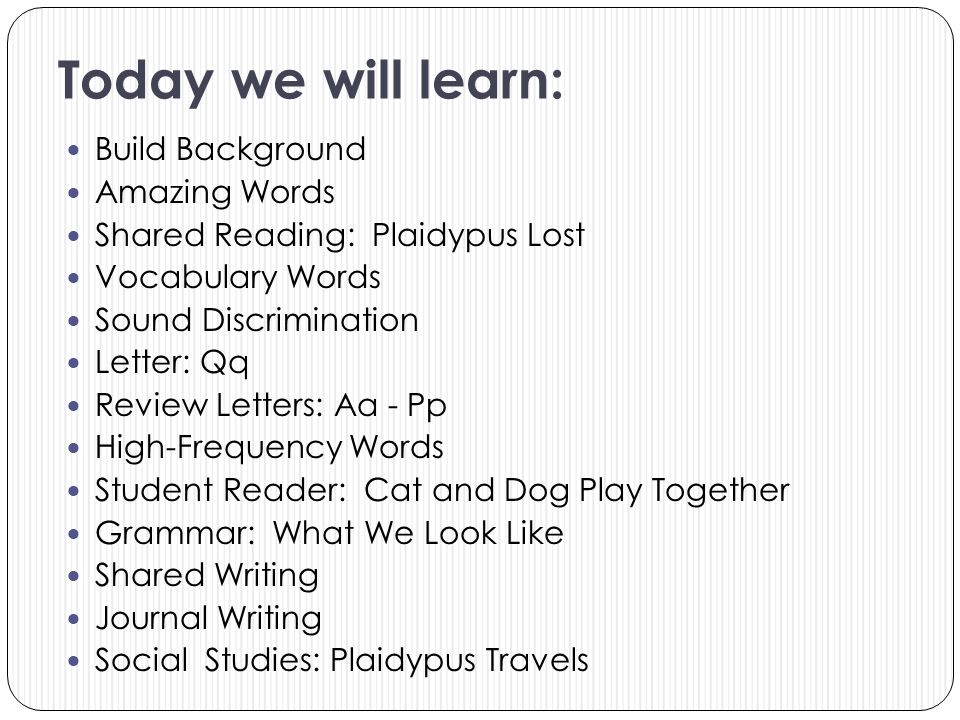 Today we will learn: Build Background Amazing Words Shared Reading: Plaidypus Lost Vocabulary Words Sound Discrimination Letter: Qq Review Letters: Aa
