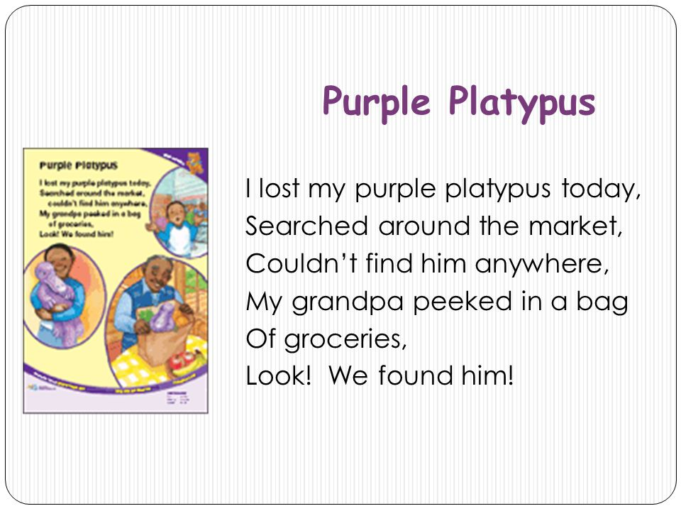 Purple Platypus I lost my purple platypus today, Searched around the market, Couldn't find him anywhere, My grandpa peeked in a bag Of groceries, Look