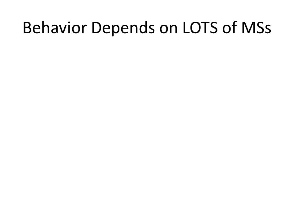 Behavior Depends on LOTS of MSs