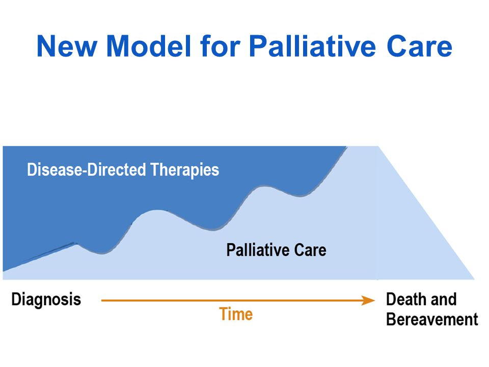 New Model for Palliative Care
