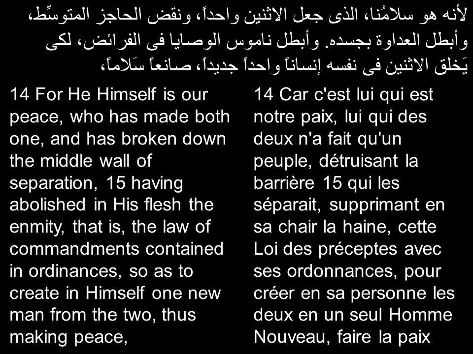 لأنه هو سلامُنا، الذى جعل الاثنين واحداً، ونقض الحاجز المتوسِّط، وأبطل العداوة بجسده.