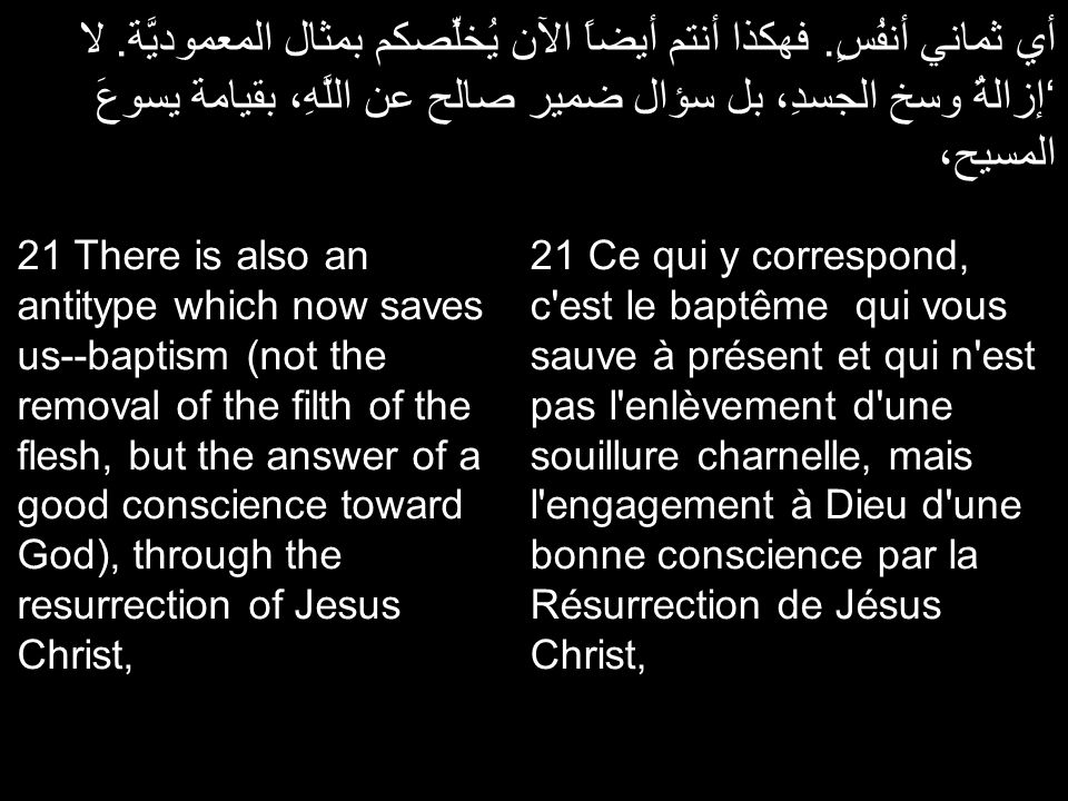 أي ثماني أنفُسٍ. فهكذا أنتم أيضاً الآن يُخلِّصكم بمثال المعموديَّة. لا 'إزالةُ وسخ الجسدِ، بل سؤال ضمير صالح عن اللَّهِ، بقيامة يسوعَ المسيح، 21 Ce qu