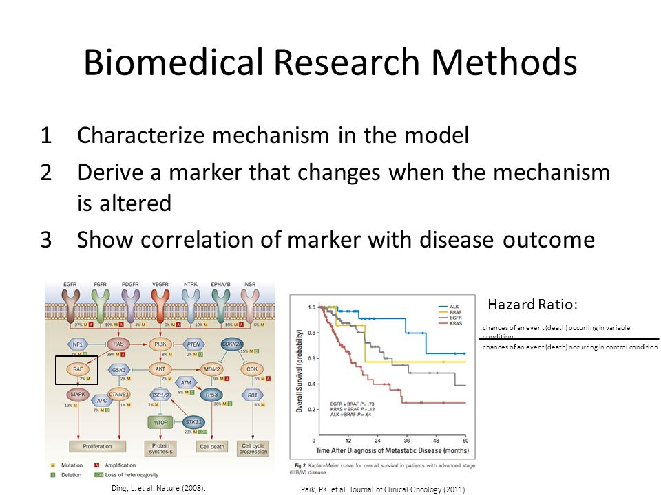 Biomedical Research Methods 1Characterize mechanism in the model 2Derive a marker that changes when the mechanism is altered 3Show correlation of marker with disease outcome Ding, L.