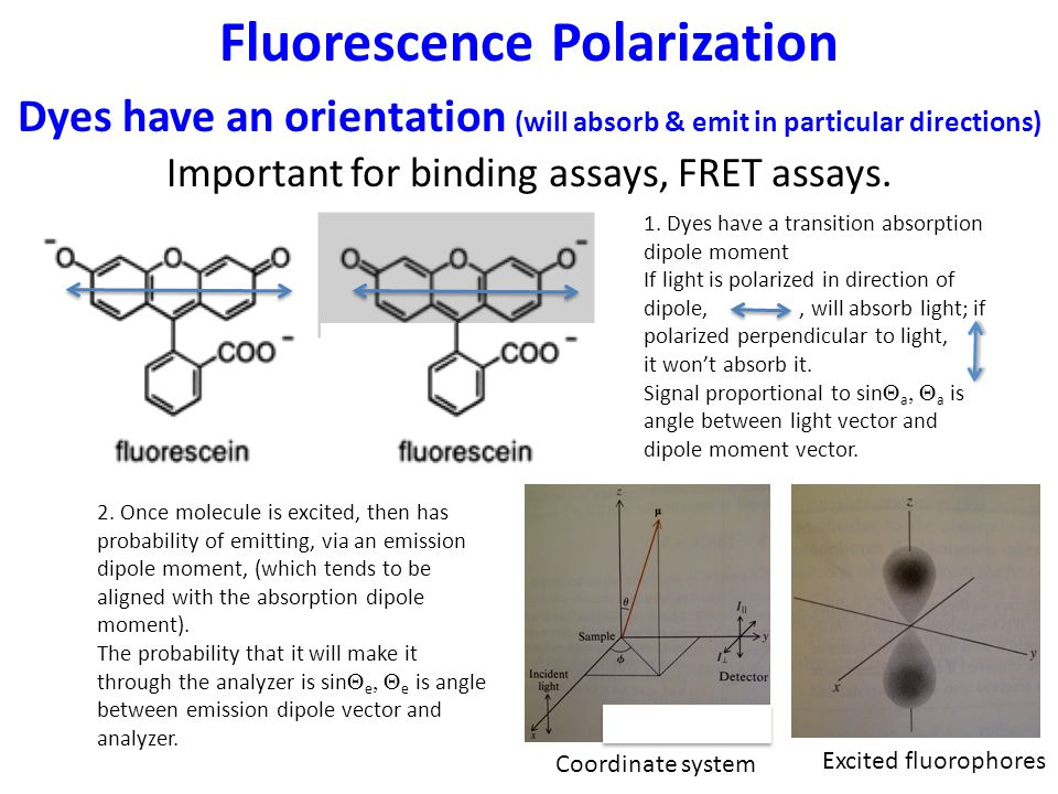 Fluorescence Polarization Dyes have an orientation (will absorb & emit in particular directions) Important for binding assays, FRET assays.