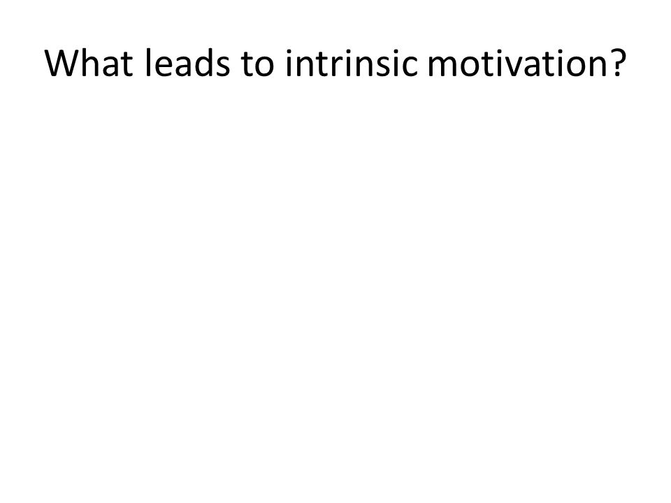 What leads to intrinsic motivation?