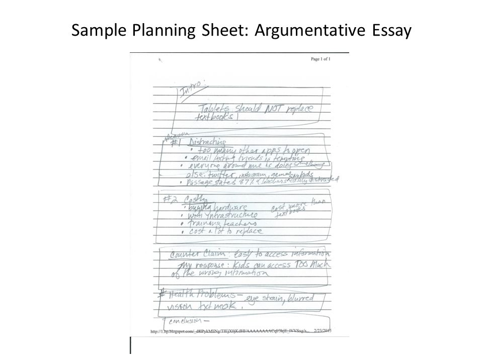 Sample Planning Sheet: Informational/ Expository Essay