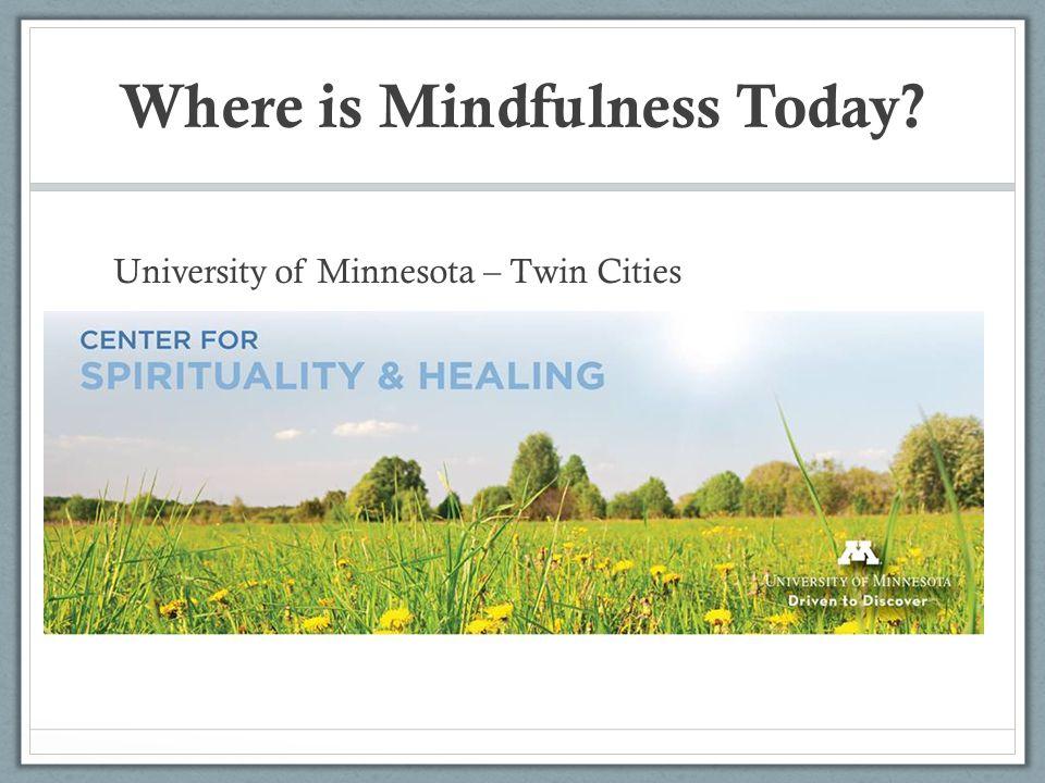 University of Minnesota – Twin Cities