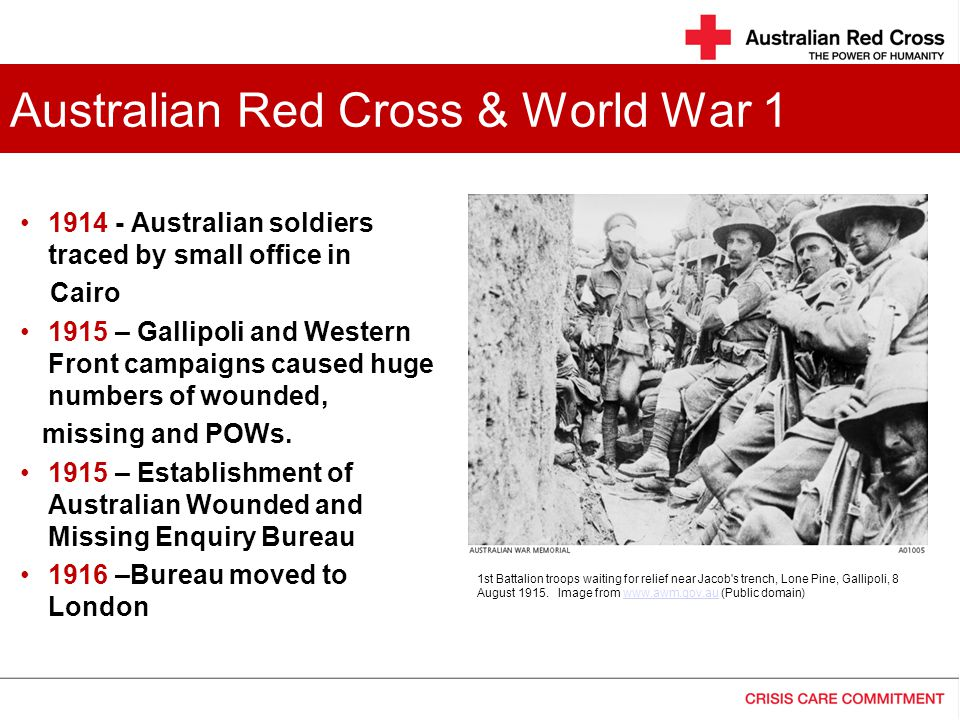 ww1 1914 - Australian soldiers traced by small office in Cairo 1915 – Gallipoli and Western Front campaigns caused huge numbers of wounded, missing and POWs.