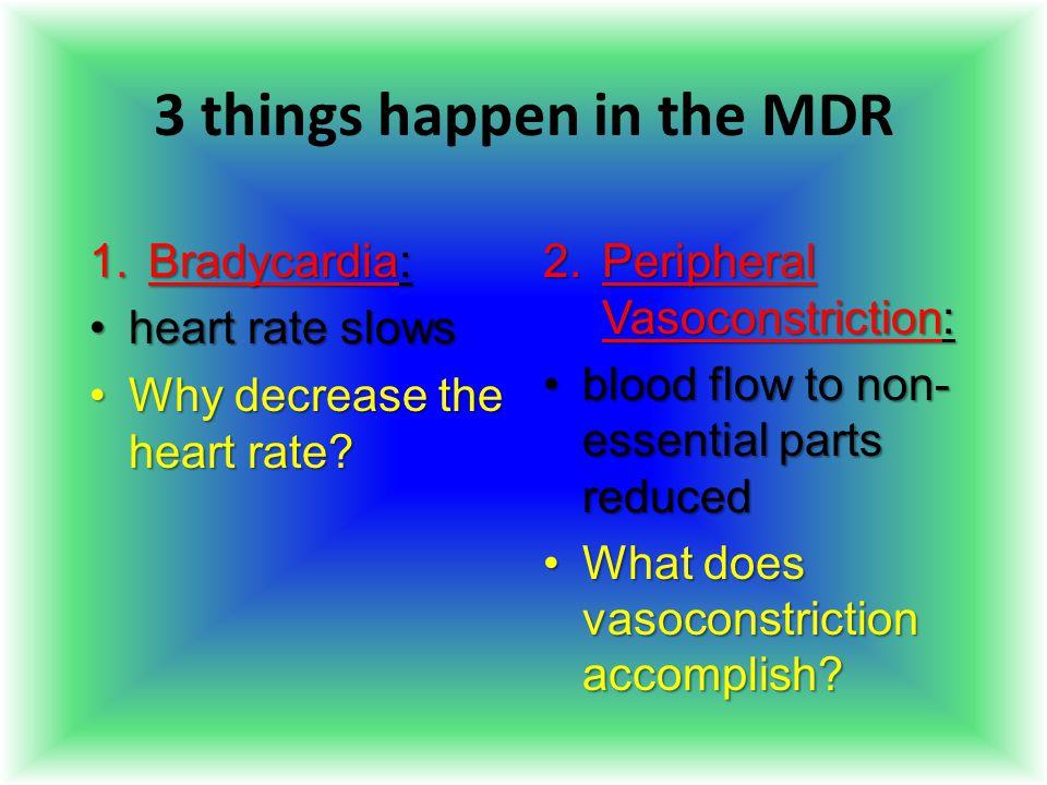 3 things happen in the MDR 1.Bradycardia: heart rate slowsheart rate slows Why decrease the heart rate?Why decrease the heart rate? 2.Peripheral Vasoc