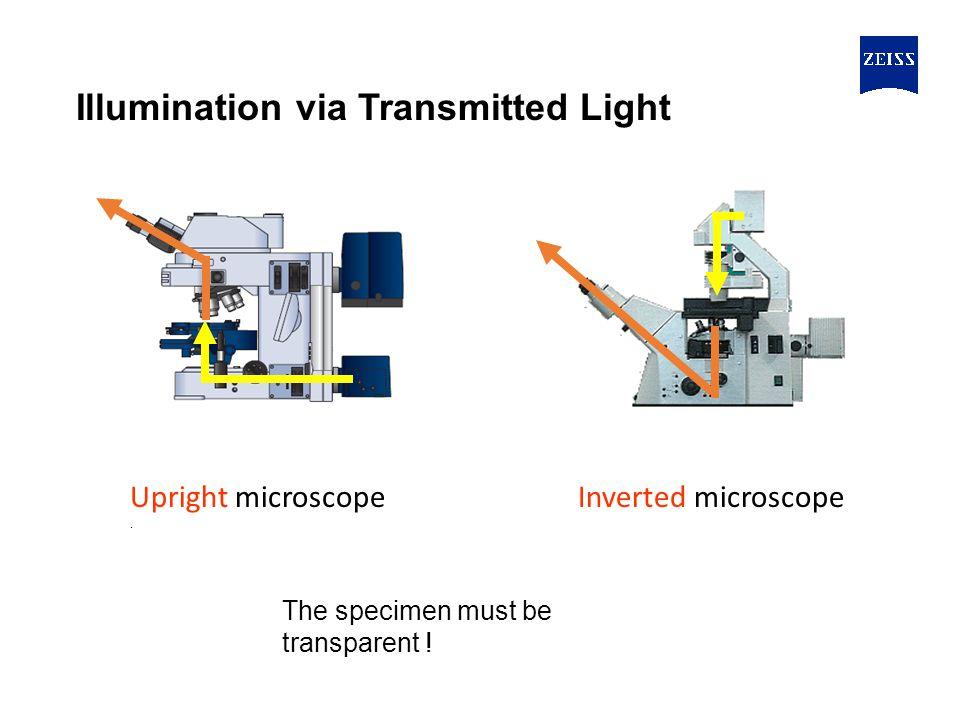 Upright microscope.