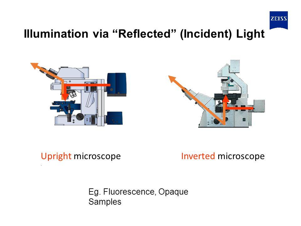 Upright microscope.Inverted microscope Illumination via Reflected (Incident) Light Eg.