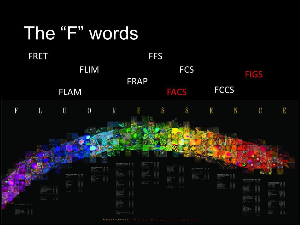 The F words FRET FRAP FLIM FCCS FCS FFS FACS FIGS FLAM